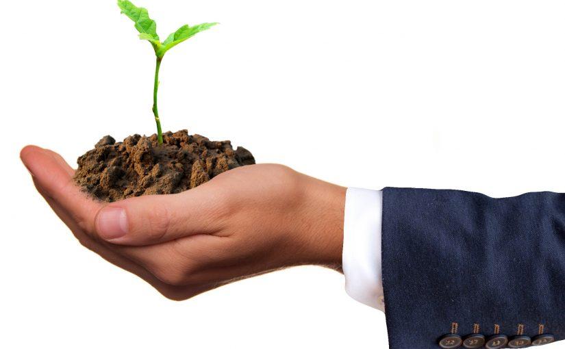 Entrepreneurial Assistance
